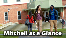 Mitchell at a Glance